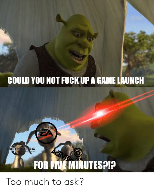 Too Much To Ask: COULD YOU NOT FUCK UP A GAME LAUNCH  ACiVs  BETHES DA  GA E STDIOS  SABISOFT  FOR AVE MINUTESP Too much to ask?