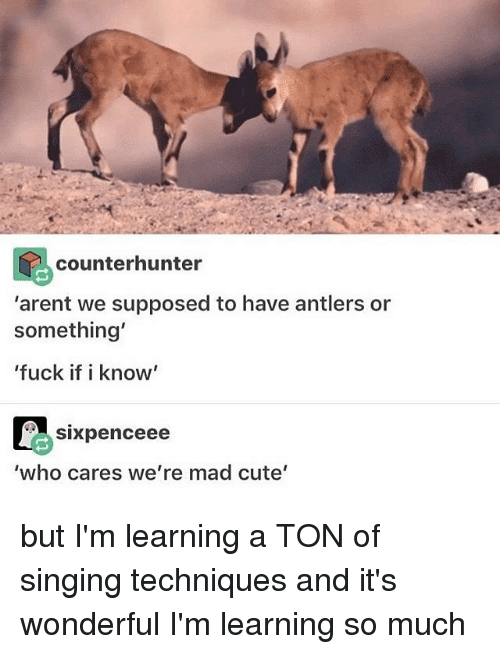 "Memes, 🤖, and Who Cares: counterhunter  ""arent we supposed to have antlers or  something'  'fuck if i know'  SIXpenceee  'who cares we're mad cute' but I'm learning a TON of singing techniques and it's wonderful I'm learning so much"