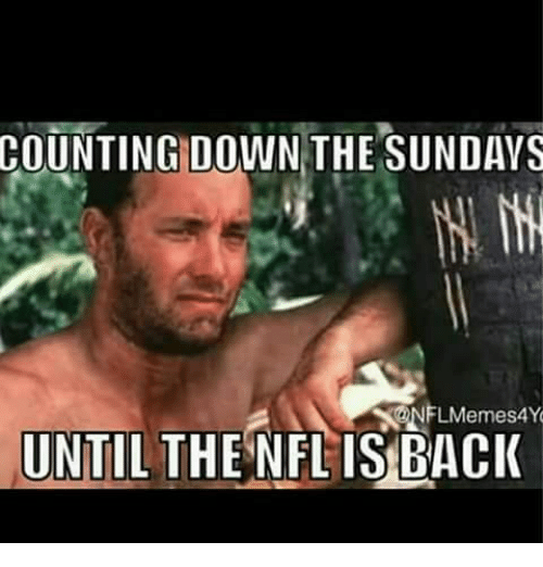 the sundays: COUNTING  DOWN THE SUNDAYS  NFLMemes4Y  UNTIL THENFLIS BACK