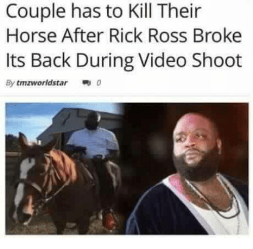 Rick Ross, Horse, and Star: Couple has to Kill Their  Horse After Rick Ross Broke  Its Back During Video Shoot  By tmzworld star 0