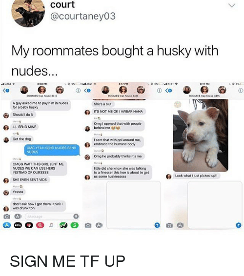Drunk, Hoe, and Memes: court  @courtaney03  My roommates bought a husky with  nudes.  17 PM  し@ 6%)  ROOMIES trap house 3415  ROOMIES  trap house 3415  ROOMES trap house 3415  A guy asked me to pay him in nudes  for a baby husky  She's a slut  ITS NOT ME OK I AWEAR HAHA  Should I do it  Omg l opened that with people  behind me  ILL SEND MINE  Get the do9  I sent that with ppl around me,  embrace the humane body  OMG YEAH SEND NUDES SEND  NUDES  omg he probably thinks it's me  OMGG WAIT THIS GIRL SENT ME  NUDES WE CAN USE HERS  INSTEAD OF OURSSSS  little did she know she was talking  to a finesser this hoe is about to get  us some huskiesssss  Look what  just picked up!!  SHE EVEN SENT VIDS  Yessss  don't ask how I got them I think  was drunk tbh  MSSg  0 SIGN ME TF UP