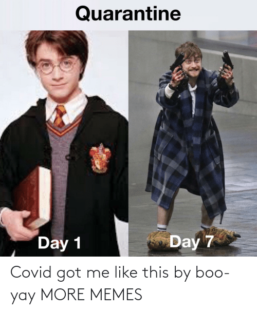 Got Me: Covid got me like this by boo-yay MORE MEMES