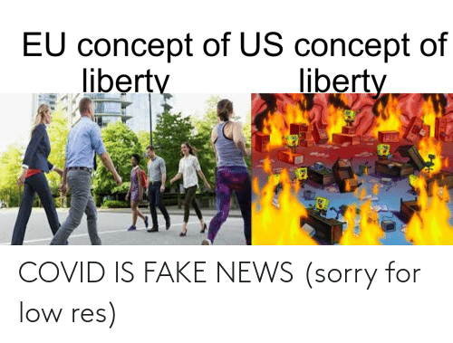Fake News: COVID IS FAKE NEWS (sorry for low res)