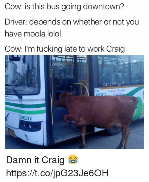 Fucking, Funny, and Work: Cow: is this bus going downtown?  Driver: depends on whether or not you  have moola lolol  Cow: I'm fucking late to Work Craig  @Masi Popa  All 2672 Damn it Craig 😂 https://t.co/jpG23Je6OH