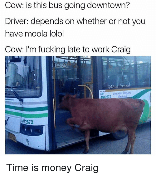 Fucking, Funny, and Money: Cow: is this bus going downtown?  Driver: depends on whether or not you  have moola lolol  Cow: I'm fucking late to work Craig  @MasiPopa  ANI2672  AN 2672 Time is money Craig
