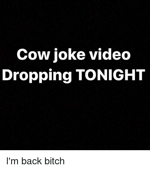 Cow Joke: Cow joke video  Dropping TONIGHT I'm back bitch
