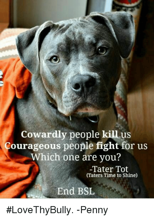 courageous people in to kill a