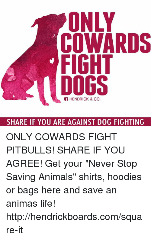 "Memes, 🤖, and Anima: COWARDS  FIGHT  DOGS  HENDRICK & Co.  SHARE IF YOU ARE AGAINST DOG FIGHTING ONLY COWARDS FIGHT PITBULLS! SHARE IF YOU AGREE!  Get your ""Never Stop Saving Animals"" shirts, hoodies or bags here and save an animas life! http://hendrickboards.com/square-it"