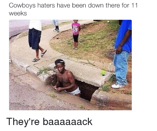 Nfl, Cowboy, and Hater: Cowboys haters have been down there for 11  weeks They're baaaaaack