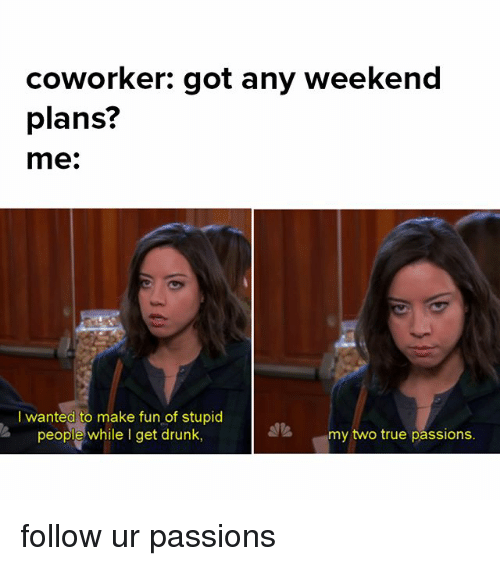 stupider: coworker: got any weekend  plans?  me.  I wanted to make fun of stupid  people while I get drunk,  my two true passions. follow ur passions