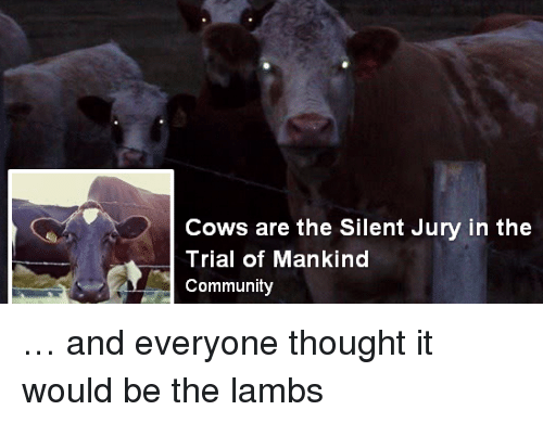 lambs: Cows are the Silent Jury in the  Trial of Mankind  Community … and everyone thought it would be the lambs