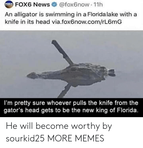 im-pretty-sure: COX FOX6 News  @fox6now 11h  An alligator is swimming in a Florida lake with a  knife in its head via.fox6now.com/rL6mG  I'm pretty sure whoever pulls the knife from the  gator's head gets to be the new king of Florida. He will become worthy by sourkid25 MORE MEMES