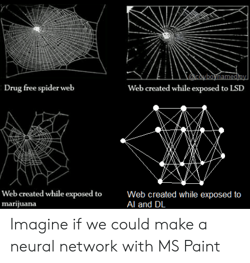 ms paint: coyboynamedioy  Drug free spider web  Web created while exposed to LSD  Web created while exposed to  marijuana  Web created while exposed to  Al and DL Imagine if we could make a neural network with MS Paint