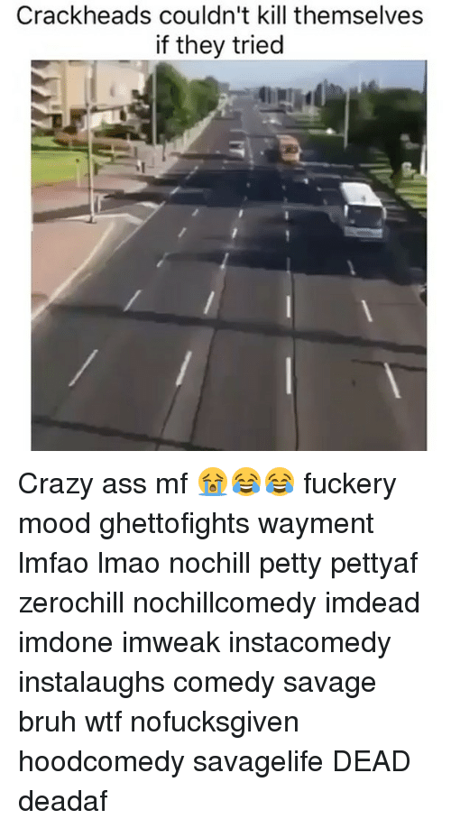 Ass, Bruh, and Crazy: Crack heads couldn't kill themselves  if they tried Crazy ass mf 😭😂😂 fuckery mood ghettofights wayment lmfao lmao nochill petty pettyaf zerochill nochillcomedy imdead imdone imweak instacomedy instalaughs comedy savage bruh wtf nofucksgiven hoodcomedy savagelife DEAD deadaf