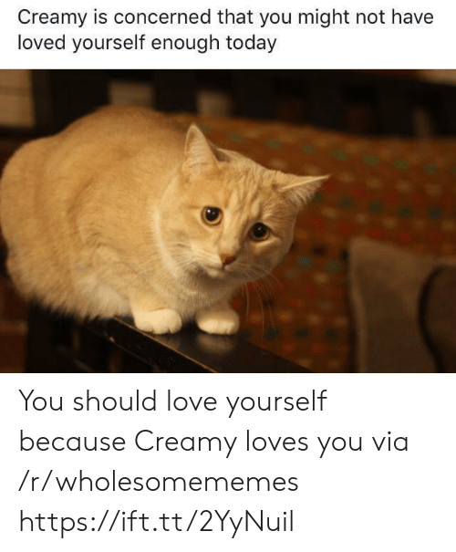 Creamy: Creamy is concerned that you might not have  loved yourself enough today You should love yourself because Creamy loves you via /r/wholesomememes https://ift.tt/2YyNuil