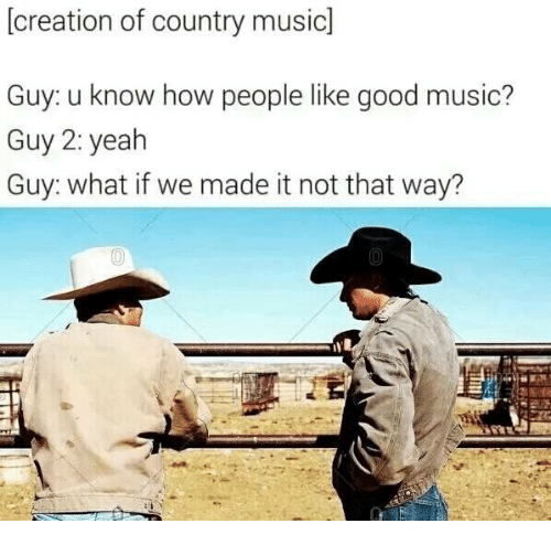 Music, Country Music, and Good: (creation of country music]  Guy. u know how people like good music?  Guy 2: yealh  Guy: what if we made it not that way?