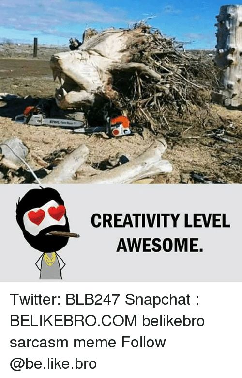 Be Like, Meme, and Memes: CREATIVITY LEVEL  AWESOME. Twitter: BLB247 Snapchat : BELIKEBRO.COM belikebro sarcasm meme Follow @be.like.bro