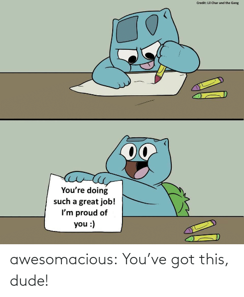 This Dude: Credit: Lil Char and the Gang  00  You're doing  such a great job!  I'm proud of  you :) awesomacious:  You've got this, dude!