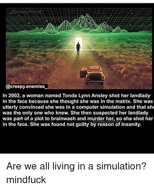 Creepy, Memes, and The Matrix: @creepy enemies  In 2002, a woman named Tonda Lynn Ansley shot her landlady  in the face because she thought she was in the matrix. She was  utterly convinced she was in a computer simulation and that she  was the only one who knew. She then suspected her landlady  was part of a plot to brainwash and murder her, so she shot her  in the face. She was found not guilty by reason of insanity. Are we all living in a simulation? mindfuck