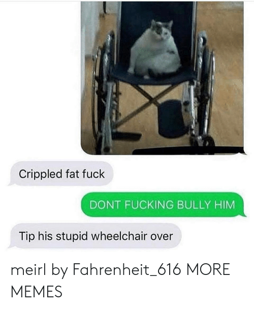 crippled: Crippled fat fuck  DONT FUCKING BULLY HIM  Tip his stupid wheelchair over meirl by Fahrenheit_616 MORE MEMES