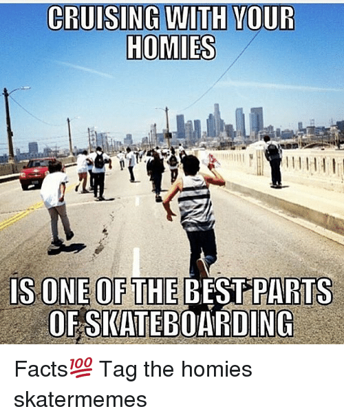 cruising: CRUISING WITH VOUR  IS ONE OF THE BEST PARTS  OFSWATEBOARDING Facts💯 Tag the homies skatermemes