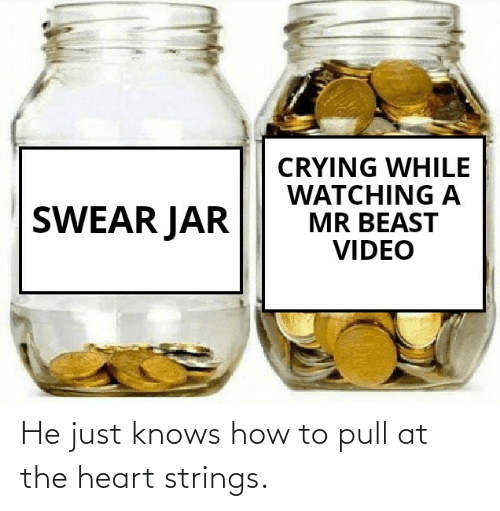 heart strings: CRYING WHILE  WATCHING A  MR BEAST  VIDEO  SWEAR JAR He just knows how to pull at the heart strings.