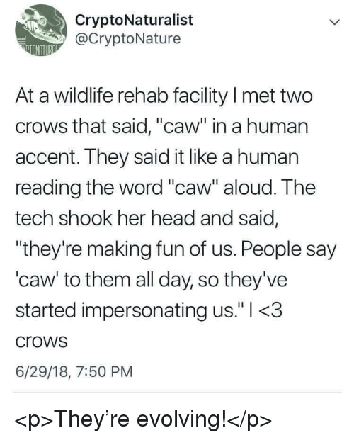 """Head, Word, and Her: CryptoNaturalist  @CryptoNature  At a wildlife rehab facility I met two  crows that said, """"caw"""" in a human  accent. They said it like a human  reading the word """"caw"""" aloud. The  tech shook her head and said,  """"they're making fun of us. People say  'caw' to them all day, so they've  started impersonating us."""" l <.3  crows  6/29/18, 7:50 PM <p>They're evolving!</p>"""