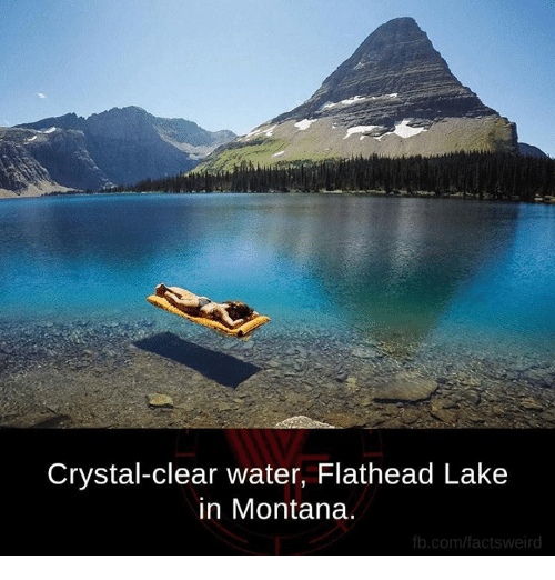 clear water: Crystal-clear water, Flathead Lake  in Montana.  fb.com/factsweird