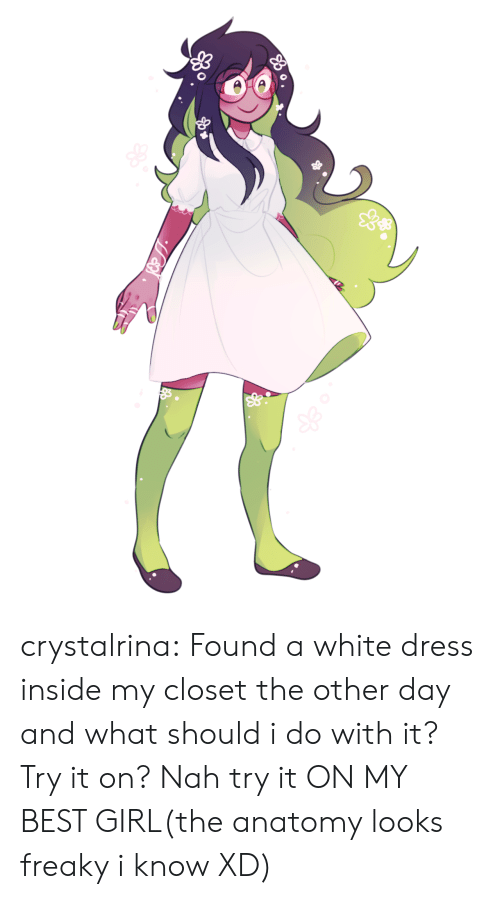 freaky: crystalrina:  Found a white dress inside my closet the other day and what should i do with it? Try it on? Nah try it ON MY BEST GIRL(the anatomy looks freaky i know XD)