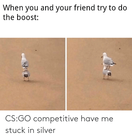 Silver: CS:GO competitive have me stuck in silver