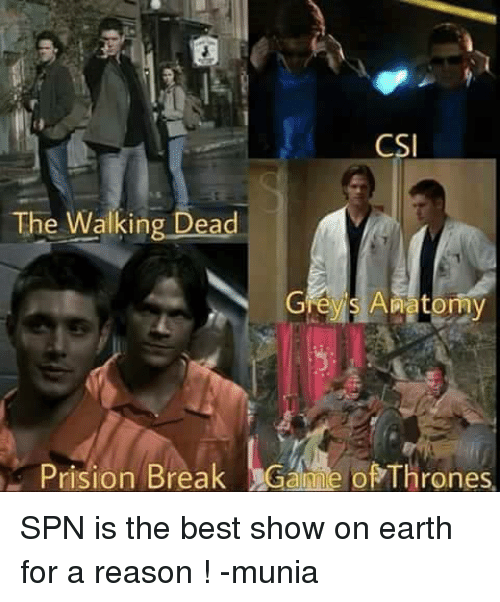 Memes, The Walking Dead, and Earth: CSI  The Walking Dead  Grey S Anatomy  Prision Break Gah e ofThro SPN is the best show on earth for a reason ! -munia