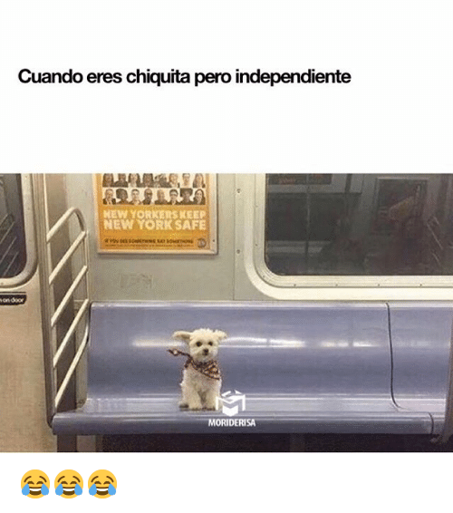 Memes, New York, and 🤖: Cuando eres chiquita pero independiente  EW YORKERS KEEP  NEW YORK SAFE  on doo  MORIDERISA 😂😂😂