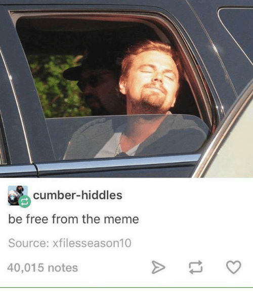 Meme, Memes, and Free: cumber-hiddles  be free from the meme  Source: xfilesseason10  40,015 notes
