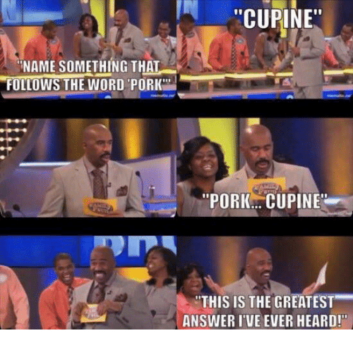 "Name Something That: ""CUPINE""  NAME SOMETHING THAT  FOLLOWS THE WORD PORK  ""PORK CU PINE  ""THIS IS THE GREATEST  ANSWER I VE EVER HEARD!"