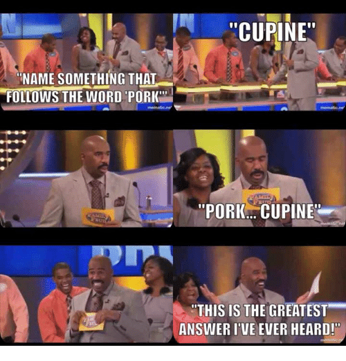 "Name Something That: CUPINE""  NAME SOMETHING THAT  FOLLOWS THE WORD PORK""  ""PORK... CUPINE  ""THIS IS THE GREATEST  ANSWER I'VE EVER HEARD!"