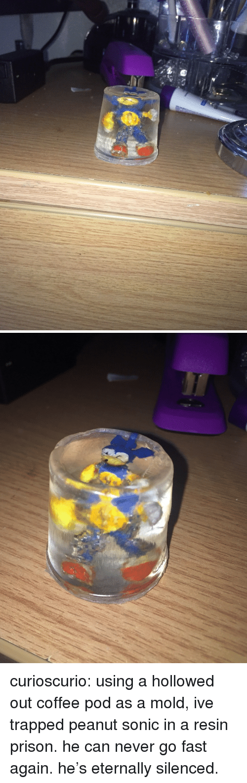 silenced: curioscurio: using a hollowed out coffee pod as a mold, ive trapped peanut sonic in a resin prison. he can never go fast again. he's eternally silenced.