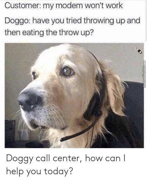 call center: Customer: my modem won't work  Doggo: have you tried throwing up and  then eating the throw up? Doggy call center, how can I help you today?