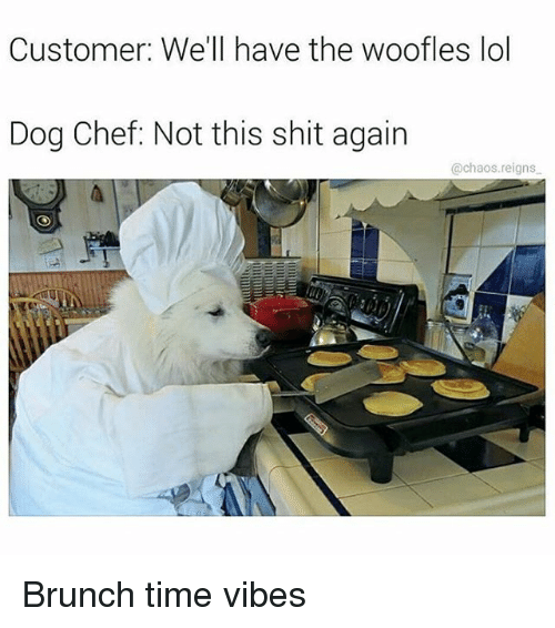 Lol, Memes, and Shit: Customer: We'll have the woofles lol  Dog Chef: Not this shit again  @chaos.reigns Brunch time vibes