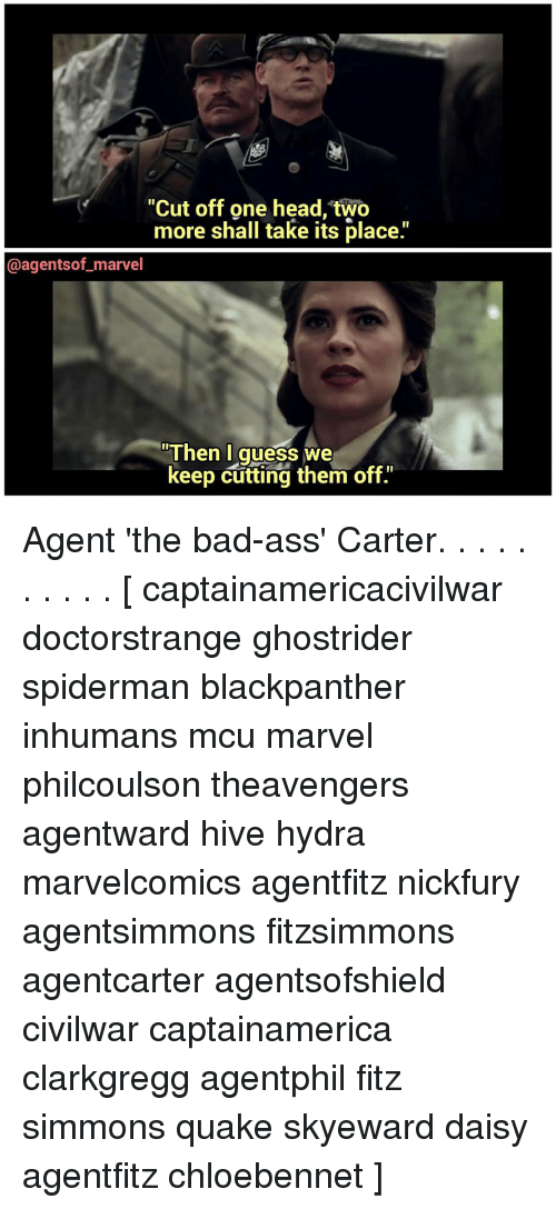 """fitz: """"Cut off one head two  more shall take its place.'  @agents of marvel  Then I  guess we  keep cutting them off."""" Agent 'the bad-ass' Carter. . . . . . . . . . [ captainamericacivilwar doctorstrange ghostrider spiderman blackpanther inhumans mcu marvel philcoulson theavengers agentward hive hydra marvelcomics agentfitz nickfury agentsimmons fitzsimmons agentcarter agentsofshield civilwar captainamerica clarkgregg agentphil fitz simmons quake skyeward daisy agentfitz chloebennet ]"""