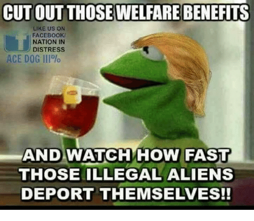 Facebook, Memes, and Aliens: CUT OUT THOSE WELFARE BENEFITS  LIKE US ON  FACEBOOK  NATION IN  DISTRESS  ACE DOG 111%  AND WATCH HOW FAST  THOSE ILLEGAL ALIENS  DEPORT THEMSELVES!!