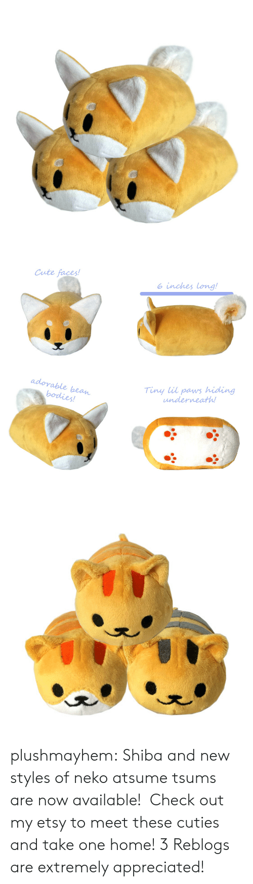 cuties: Cute faces!  o inches long!  adorable bean  Tiny lil paws hiding  underneath plushmayhem:  Shiba and new styles of neko atsume tsums are now available! Check out my etsy to meet these cuties and take one home! 3 Reblogs are extremely appreciated!
