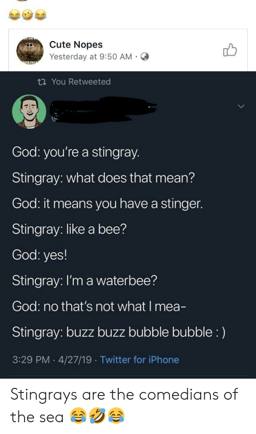Nopes: Cute Nopes  db  Yesterday at 9:50 AM.O  ti You Retweeted  God: you're a stingray.  Stingray: what does that mean?  God it means you have a stinger.  Stingray: like a bee?  God: yes!  Stingray: I'm a waterbee?  God: no that's not what I mea-  Stingray: buzz buzz bubble bubble:)  3:29 PM 4/27/19 Twitter for iPhone Stingrays are the comedians of the sea 😂🤣😂