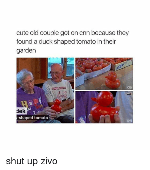 Girl Memes: cute old couple got on cnn because they  found a duck shaped tomato in their  garden  dek  -shaped tomato shut up zivo