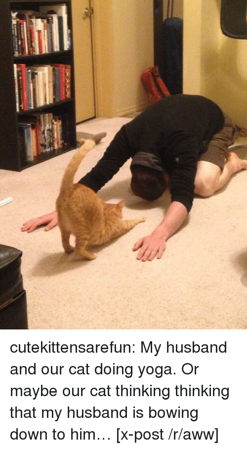 bowing: cutekittensarefun:  My husband and our cat doing yoga. Or maybe our cat thinking thinking that my husband is bowing down to him… [x-post /r/aww]