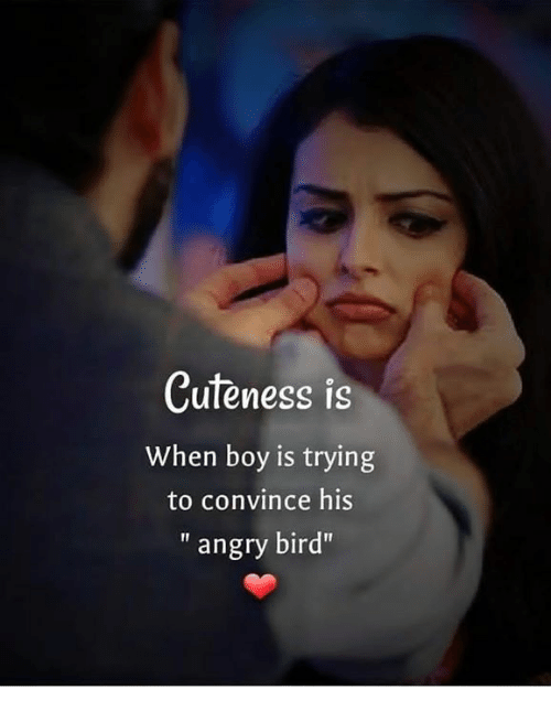 Memes Angry And Boy Cuteness Is When Boy Is Trying To Convince His Angry Bird