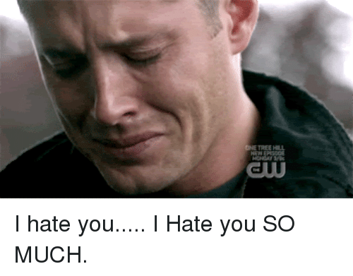 10 Things I Hate About You Meme: 25+ Best Memes About I Hate You So Much