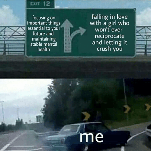 falling in love: CXIT 12  focusing on  important things  essential to your  future and  maintaining  stable mental  health  falling in love  with a girl who  won't ever  reciprocate  and letting it  crush you  me