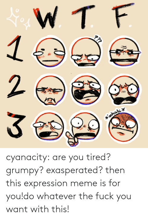 Expression: cyanacity:  are you tired? grumpy? exasperated? then this expression meme is for you!do whatever the fuck you want with this!
