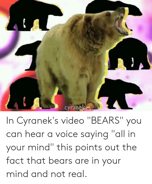 """Cyranek: cyranek In Cyranek's video """"BEARS"""" you can hear a voice saying """"all in your mind"""" this points out the fact that bears are in your mind and not real."""