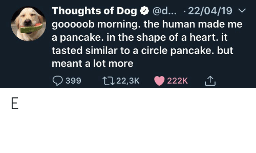 shape: @d... .22/04/19  Thoughts of Dog  gooooob morning. the human made me  a pancake. in the shape of a heart. it  tasted similar to a circle pancake. but  meant a lot more  399  t22,3K  222K E
